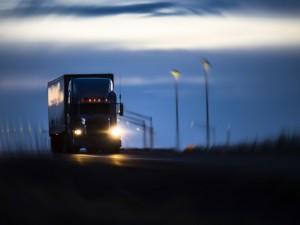 Lái xe đường dài qua khu vực rừng núi thường hay có động vật chạy qua đường, bất kể ngày hay đêm. Chú ý đi chậm và quan sát.